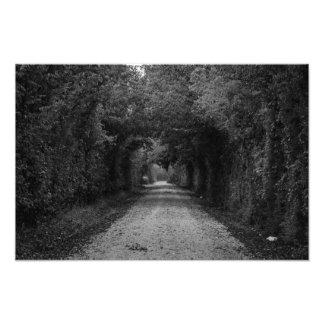 A estrada escura impressão de fotos