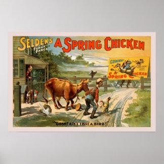 A farsa engraçada de Selden, um poster da galinha Pôster