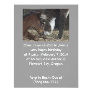 A festa de aniversário engraçada convida o cavalo convite