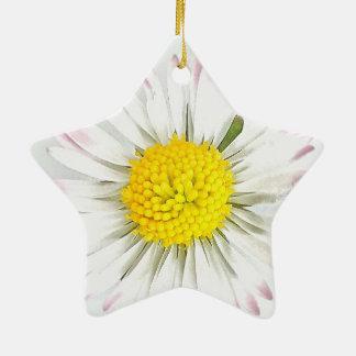 A flor da margarida Dble-Tomou partido ornamento