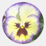 A flor do amor perfeito representa etiquetas adesivos redondos