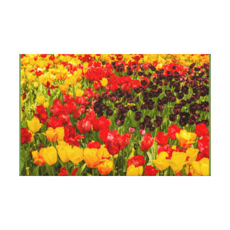 a florescência das tulipas em um impressão   das