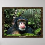 """A """"FLORESTA HÚMIDA SONHA"""" poster da arte do chimpa"""