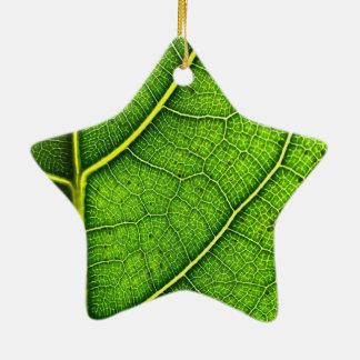 A folha verde Dble-Tomou partido ornamento da