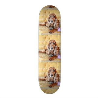 A foto memorável do animal de estimação shape de skate 20,6cm