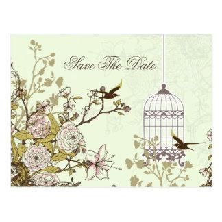 A gaiola de pássaro verde chique, pássaros do amor cartão postal