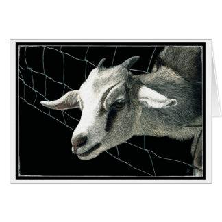"""""""A grama é sempre"""" - um cartão mais verde da cabra"""