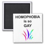 A homofobia é tão alegre ima