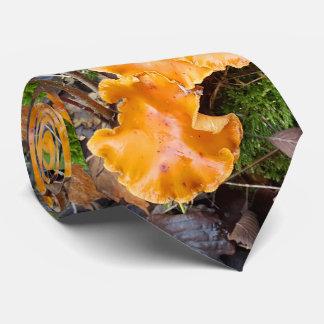 A laranja selvagem cresce rapidamente foto da gravata
