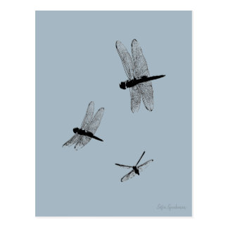 A libélula mostra em silhueta o cartão