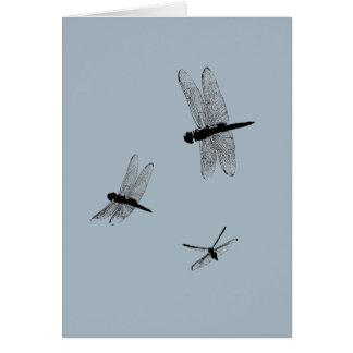 A libélula mostra em silhueta o cartão vazio