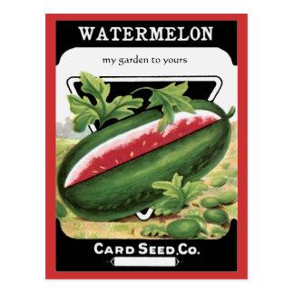 a melancia semeia o cartão