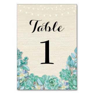 A mesa numera Succulents do casamento cartões