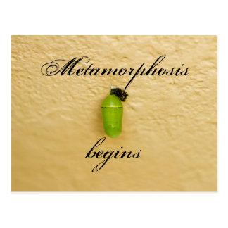 A metamorfose começa o verde da borboleta de cartão postal