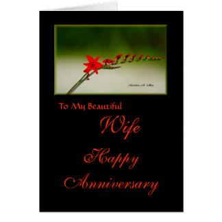 A meu aniversário feliz da esposa bonita cartão comemorativo