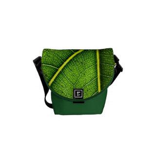 A mini bolsa mensageiro da folha