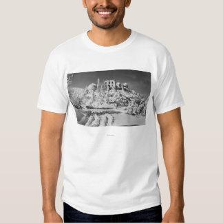 A montagem Hamilton, Califórnia lambe o Tshirt