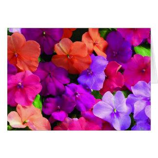 A multi cor floresce o cartão - vazio