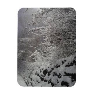 a neve expia o ímã da parede