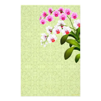 A orquídea branca cor-de-rosa do Phalaenopsis flor Papéis Personalizados