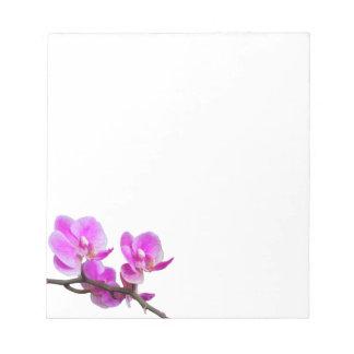A orquídea cor-de-rosa floresce o bloco de notas