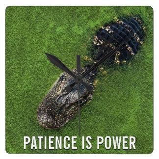 A paciência é poder • Jacaré • Natureza de Florida Relógio Quadrado