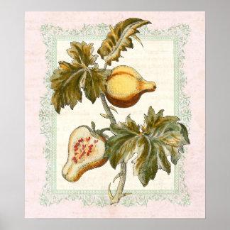 A pera frutificou decoração do país do estilo da c impressão