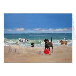 A praia ata o cartão