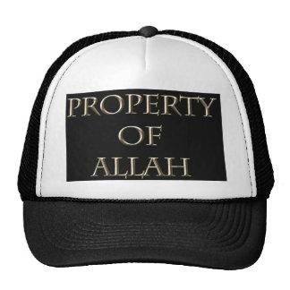 A propriedade do vetor de Allah projetou a arte da Boné