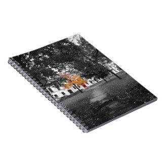 A queda da cidade colore o caderno