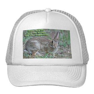 A regra #2 do Vegan obedece o coelho! Presentes &  Boné