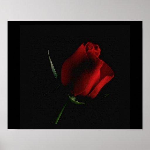 A rosa vermelha Preto-adiciona sobre palavras se v Pôsteres