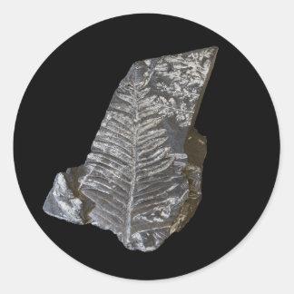 A samambaia fossilizada deixa a foto no preto adesivo em formato redondo