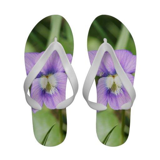 A sandália das mulheres (flor roxa) flip-flops