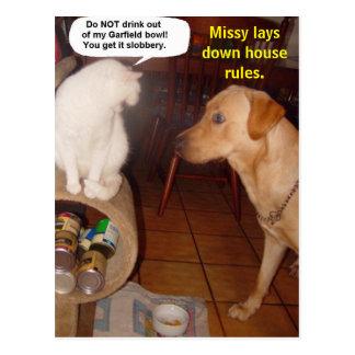 A senhorita estabelece regras da casa cartao postal