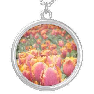 A tulipa cor-de-rosa dos presentes da colar
