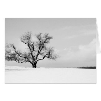 A uma árvore no cartão do inverno