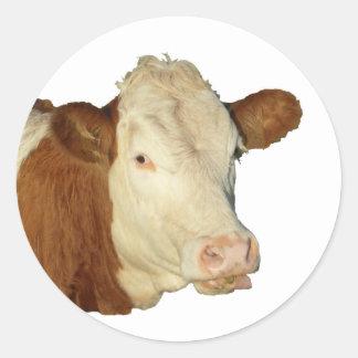 A vaca adesivo em formato redondo