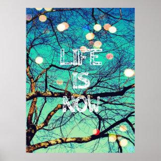A vida é agora poster