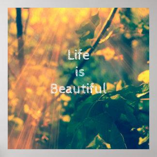A vida é poster bonito, inspirador