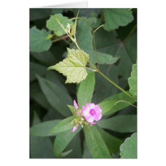 A vida simples… não é citações simples da flor cartão comemorativo