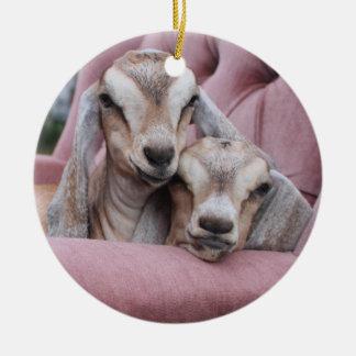 Abacate & ornamento do feriado de Smooshie