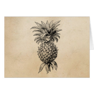 Abacaxis da ilustração do abacaxi dos 1800s do cartão comemorativo