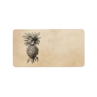 Abacaxis da ilustração do abacaxi dos 1800s do etiqueta de endereço