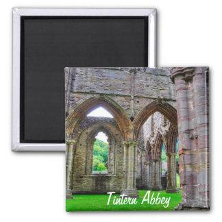 Abadia antiga de Tintern, monastério Cistercian, Imã De Refrigerador