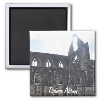 Abadia antiga de Tintern, monastério Cistercian, Ima De Geladeira