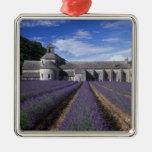 Abadia de Senanque, Gordes, Vaucluse, Provence, Ornamento Quadrado Cor Prata