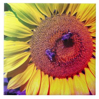 Abelha colorida brilhante do mel dos girassóis do
