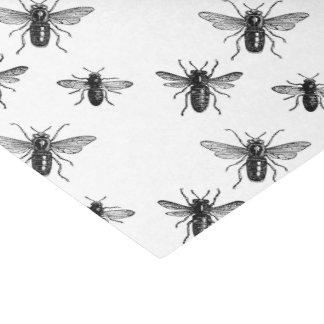 Abelha de rainha do vintage & ilustração de papel de seda