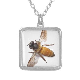 Abelha do mel colar banhado a prata